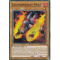 Salamangreat Mole - Super Rare (Unlimited Edition) - OTS Tournament Pack 10 - Yu-Gi-Oh! - Big Orbit Cards