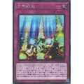 Cubic Causality - Ultra Rare (1st Edition) - Duel Overload - Yu-Gi-Oh! - Big Orbit Cards