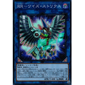 Raidraptor - Wise Strix - Ultra Rare (1st Edition) - Duel Overload - Yu-Gi-Oh! - Big Orbit Cards