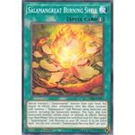 Salamangreat Burning Shell - Common (1st Edition) - Chaos Impact - Yu-Gi-Oh! - Big Orbit Cards
