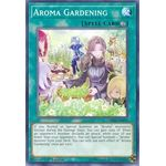 Aroma Gardening - Common (1st Edition) - Chaos Impact - Yu-Gi-Oh! - Big Orbit Cards