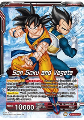Son Goku and Vegeta - Destroyer Kings - Dragon Ball Super Card Game - Big Orbit Cards